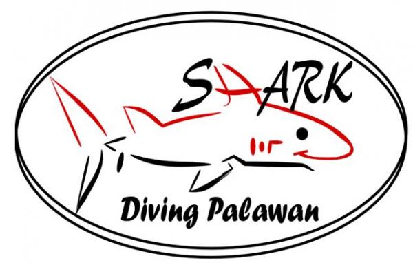 1 day: 3 Dives Package